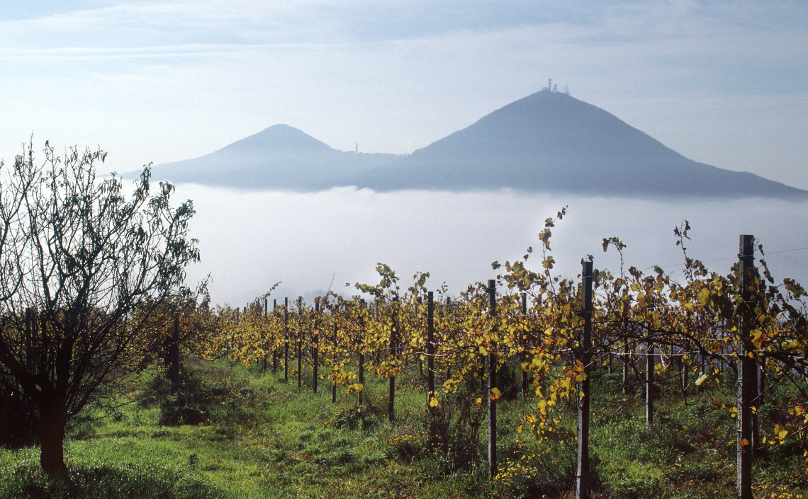 Landscape towards Colli Euganei